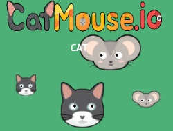 Catmouse.io Game